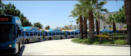 5 blue buses